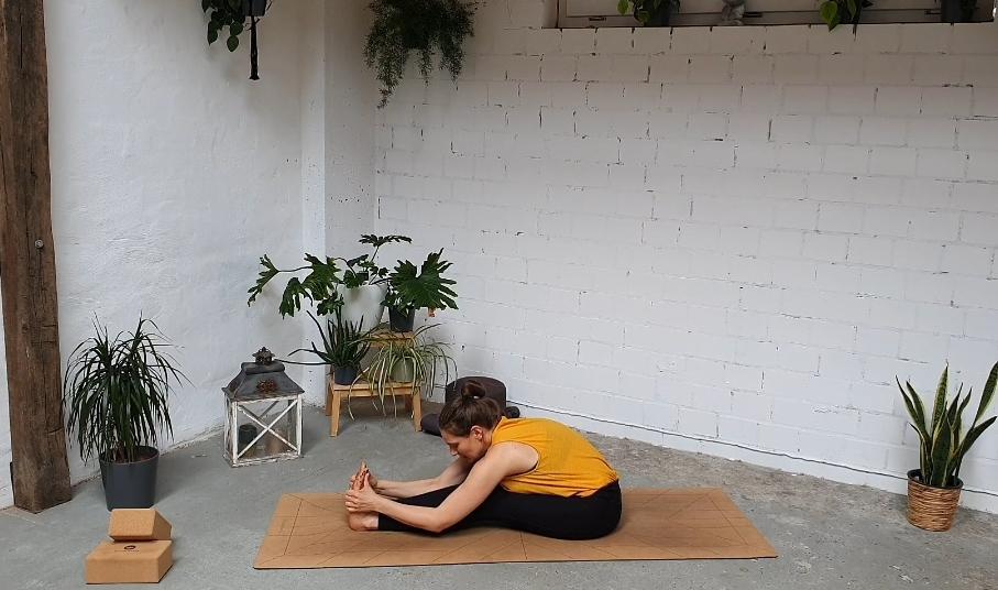 Yoga Vorbeuge Pashimottanasana