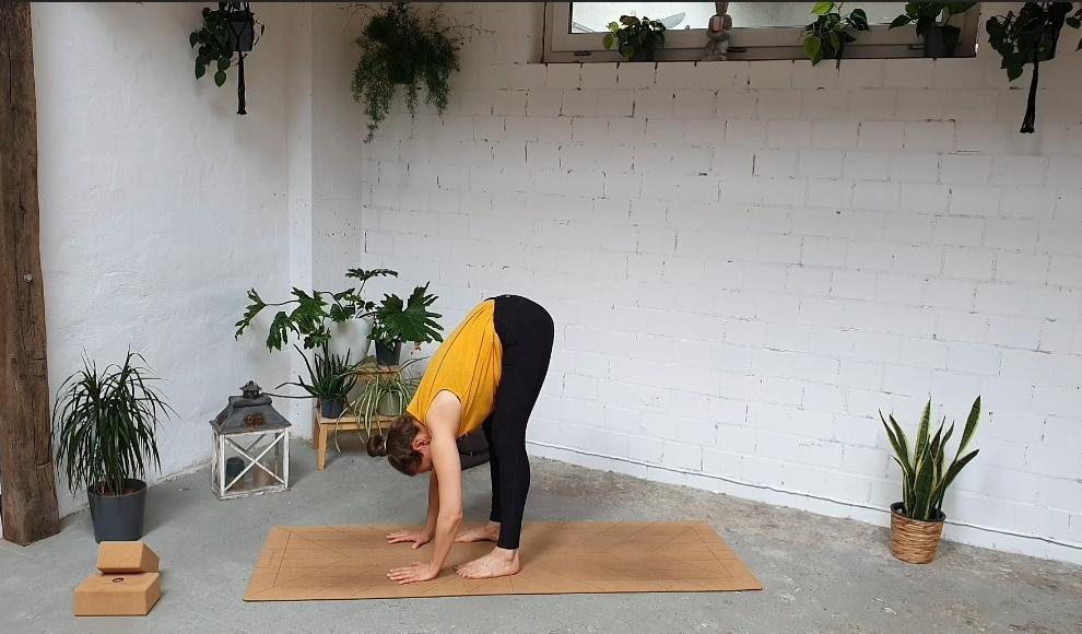 Lilly Rugg Yoga Vorbeuge Rücken Übungen